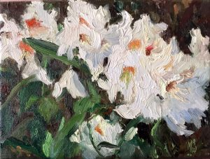 Witte Rhododendron - 18x24 cm