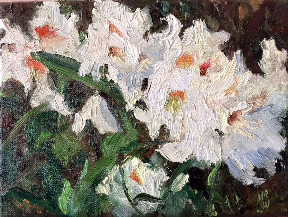 I - Witte Rhododendron - 18x24 cm